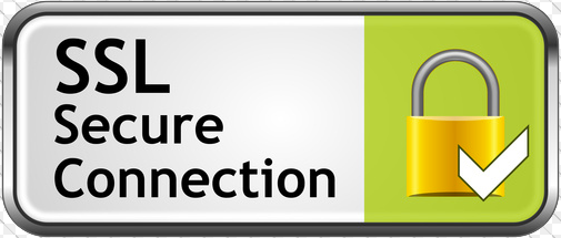 SSL Secure Connection Icon